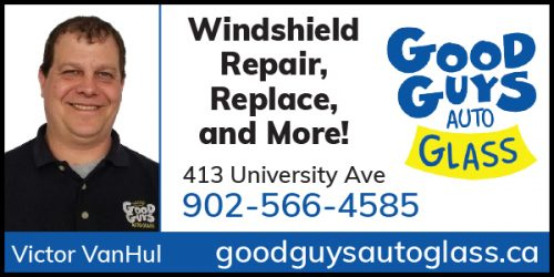 Good Guys Auto Glass